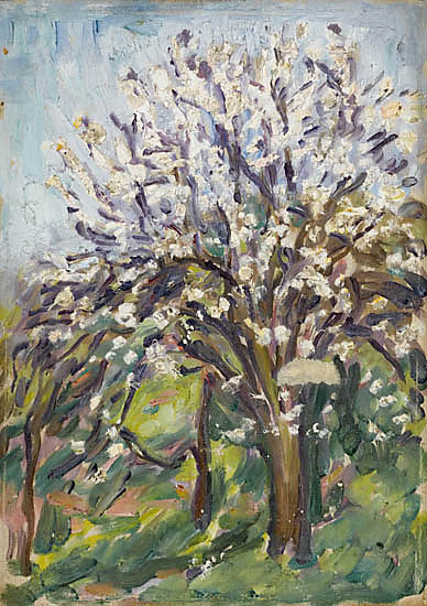 Artist Arthur Studd: Almond Blossom on a sloping verge, South of France, circa 1910