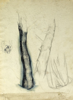 Artist Alan Sorrell: Sheet of studies - tree trunk (recto);kneeling man (verso)