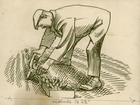 Artist Evelyn Dunbar: Design for Gardener's Choice, Tailpiece for 'Flowering Onions' ill. p21, 1936-37