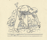 Artist Evelyn Dunbar: Design for page 131 vignette, Gardener's Choice