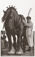 Artist Charles Frederick Tunnicliffe R.A.: Stallion and Groom