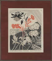 Artist Edward Bawden: Wildflowers