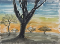Artist Rudolph Sauter: Trees in sunset