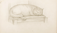 Artist Stanley Lewis: The Fat Cat