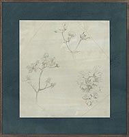 Artist Victor Hume Moody: Study of branches and flowers