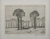 Artist John Moody: Elm Trees in Essex II, 1928