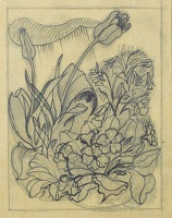 Artist John Nash: Study of a spring garden with tulips, primroses and dwarf daffodils