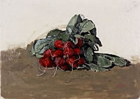 Artist Carolyn Sergeant: A bunch of radishes, 1992