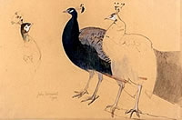 Artist John Sergeant: A Peacock and Peahen, mid 1980s