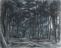 Artist Alan Sorrell: The Dark Wood